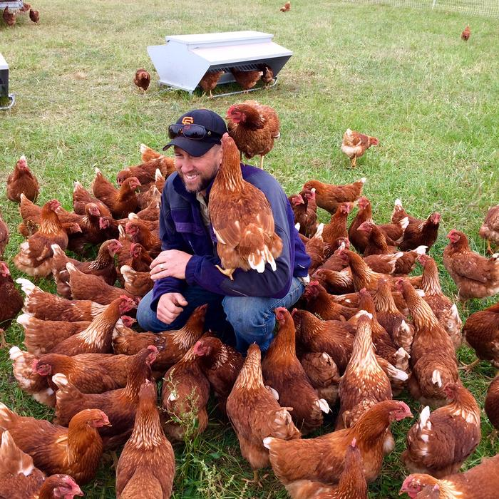 are these the happiest chickens in australia sbs food
