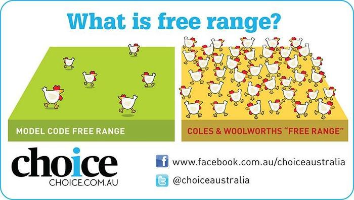 Infographic showing the difference between 1,500 chickens per hectare and 10,000 per hectare