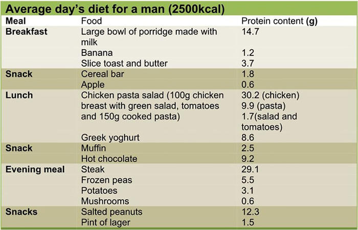 How Much Protein Do You Really Need Sbs Food