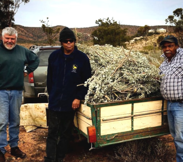 Managing Director of Outback Fresh, Mike Quarmby and foragers, Kelvin and Kelvin Jr
