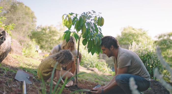 Daman Gameau, his wife and daughter plant a tree together.