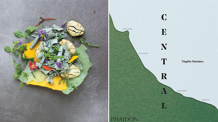 Central book cover and recipe