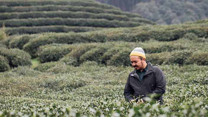 Adam Liaw at Longjing tea fields in Hangzhou. Destination Flavour China
