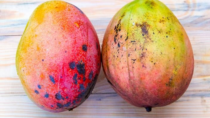 Mangoes don't belong in the fridge: The fruit hacks you need