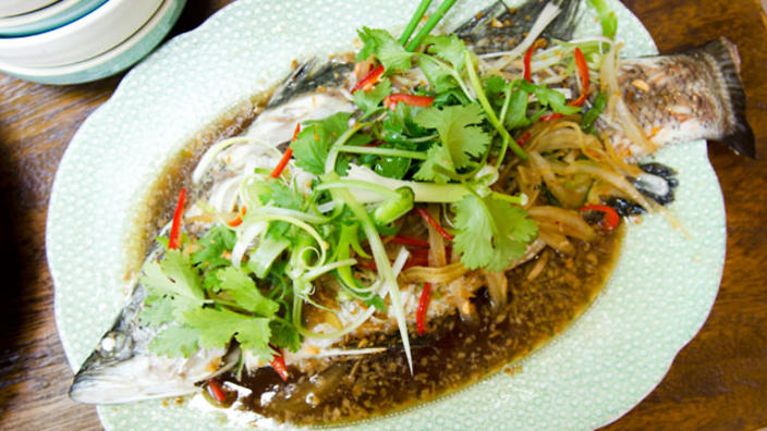 recipe: steamed fish with oyster sauce [5]