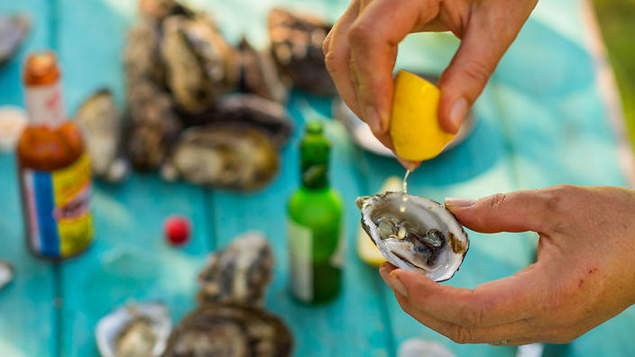 Steamed oysters with tomato, chilli and coriander salsa