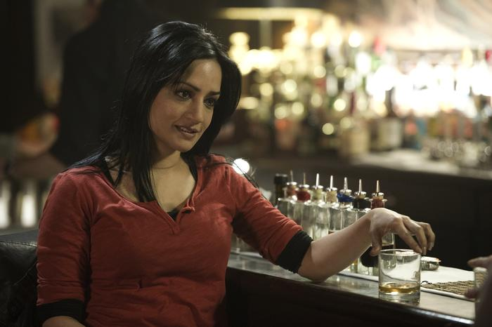 archie panjabi reed smith the fall