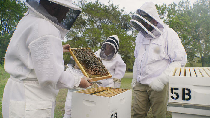 The Bee Whisperer aka Charlie Bee Company