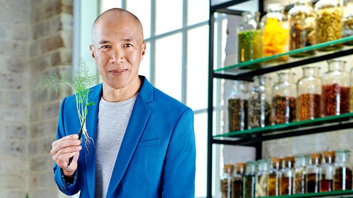 medicine or myth, Dr Charlie Teo