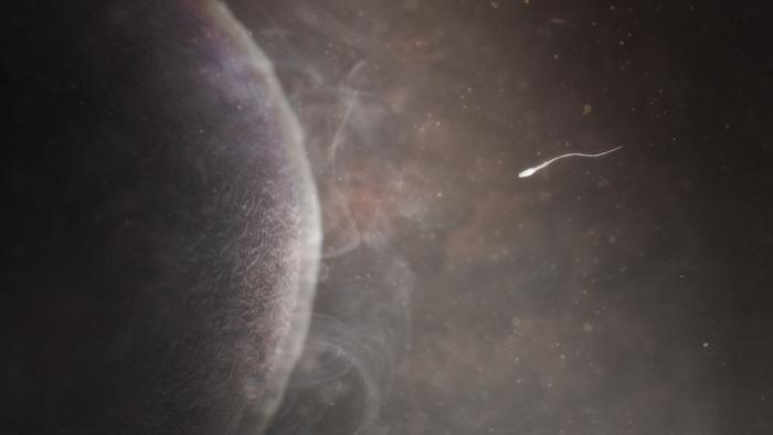 Digitally created image showing a sperm meeting an egg when two sets of genes will combine to create a new life.