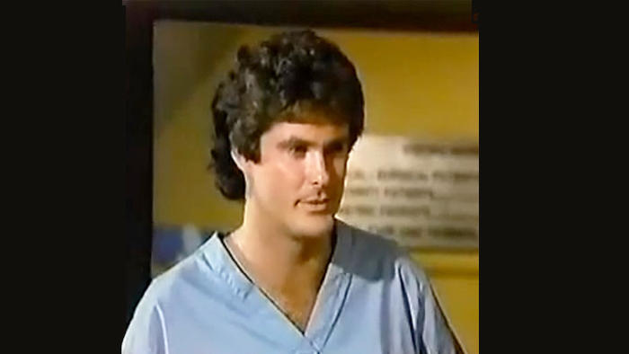David Hasselhoff as he appeared on US soap The Young and the Restless