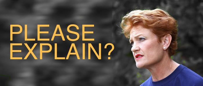 10 of Pauline Hanson's most infamous quotes | Guide