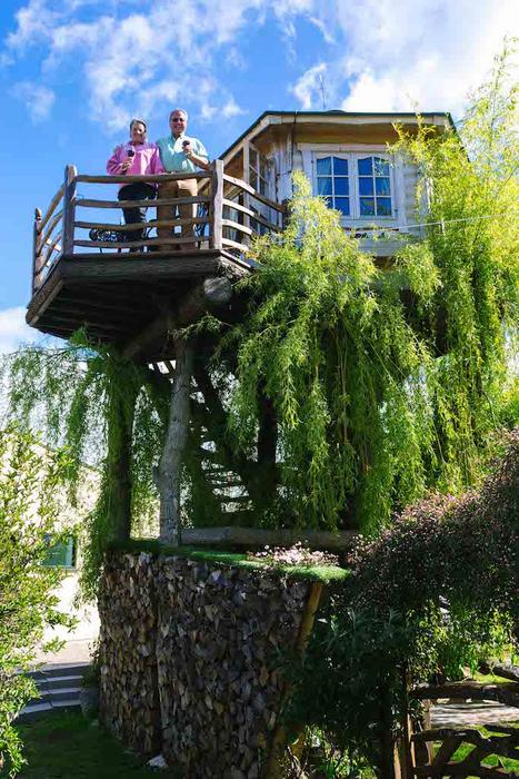 George Clarke Shed of the Year, treehouse shed