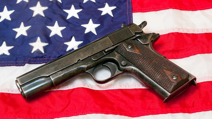 Why America can't surrender its guns | Guide