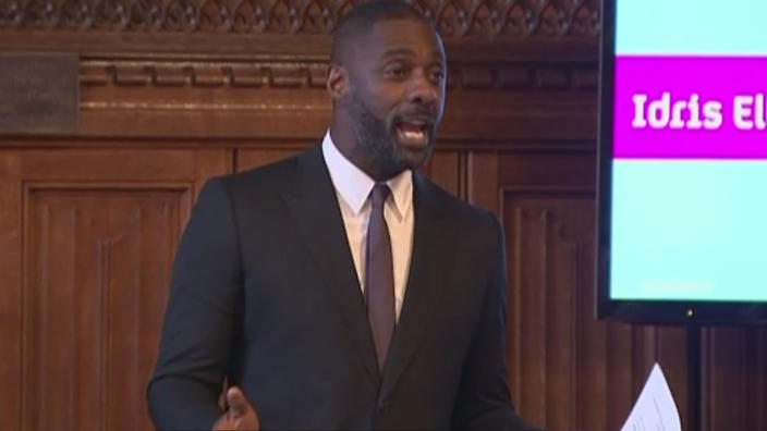Idris Elba addresses UK MPs regarding the lack of diversity