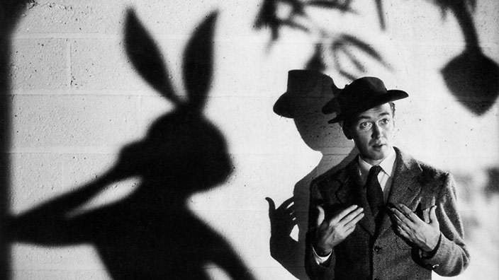 15 Weird and Wonderful Rabbits in Movies | Movie News | SBS Movies