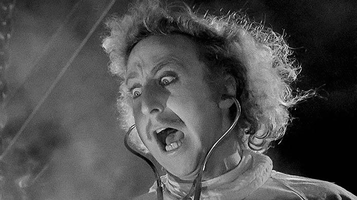 Is Young Frankenstein The Funniest Movie Ever Made Movie Blog