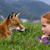 Fox and the child_896998786