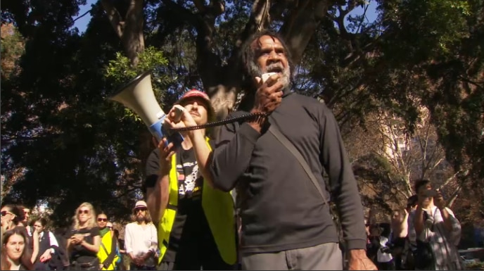 People gathered in Hyde Park to rally against NSW adoption laws/