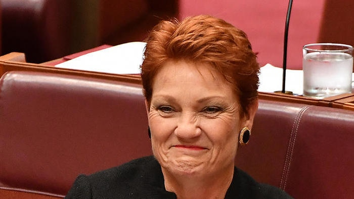 One Nation leader Senator Pauline Hanson during Senate Question Time at Parliament House in Canberra