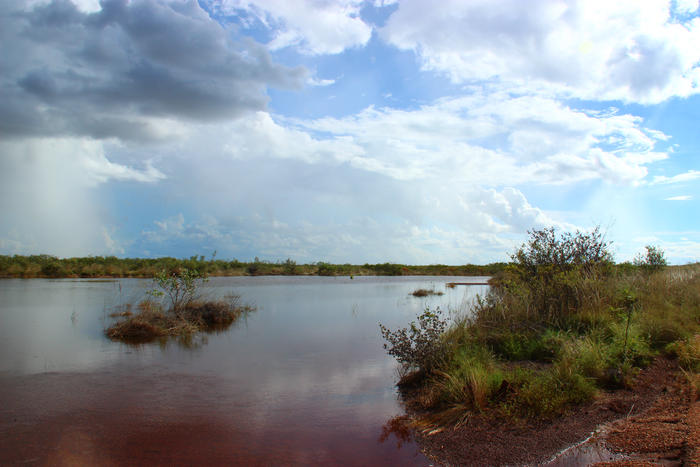 Spot showers across the Kimberley feed these water holes that Bilbys and other animals live off.