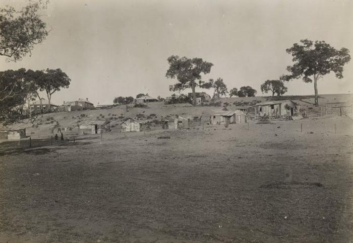 Shacks at Moore River Native Settlement, Western Australia, circa 1920, where Walsh's grandmother was held