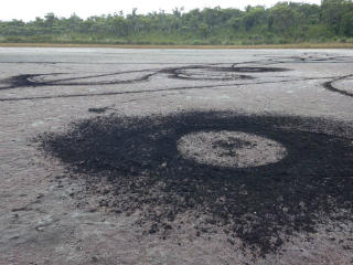 Track marks on lake near Mt Lindesay, caused by illegal vehicle use. The lake is an Aboriginal sacred site and vehicle access is not permitted.