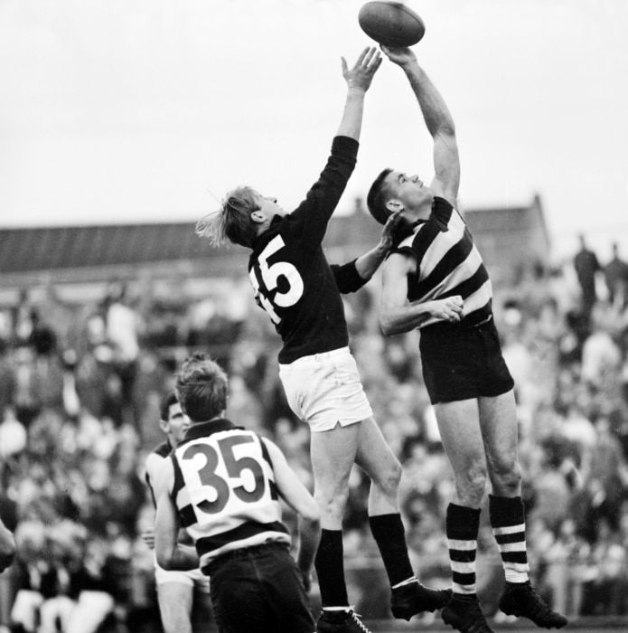 Round 9. v Fitzroy. Polly Farmer about to ruck tap to Bill Goggin at Kardinia Park, 1966.
