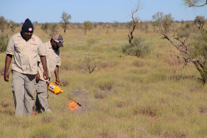 Rangers burning country to bring back new growth