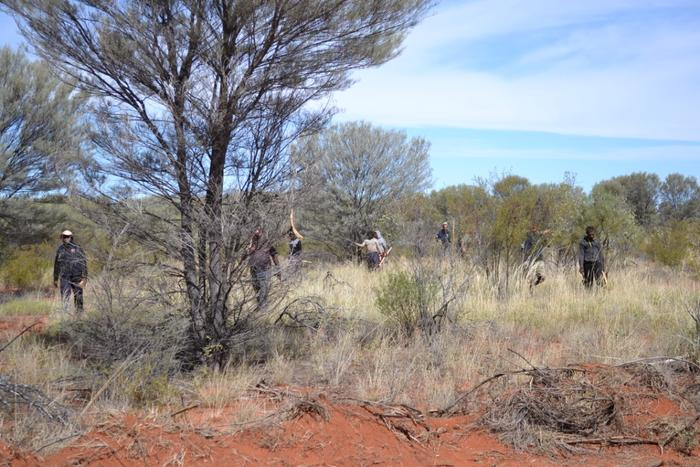 The men are barely visible as they emerge from the Mulga scrub with their tools in hand.