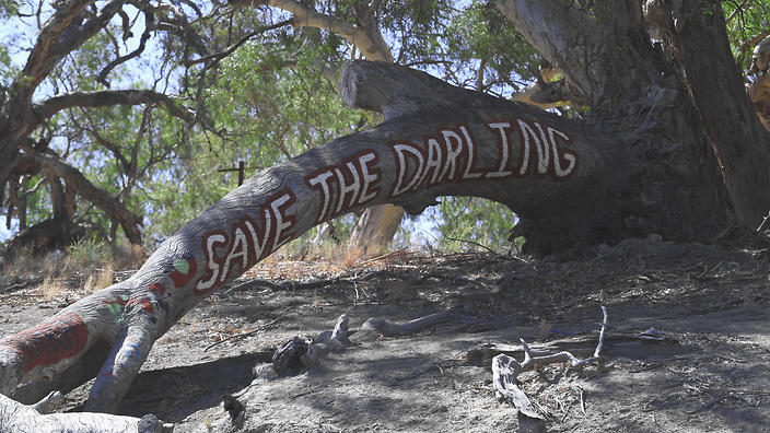 Where is the Indigenous voice in the Murray-Darling crisis? | NITV