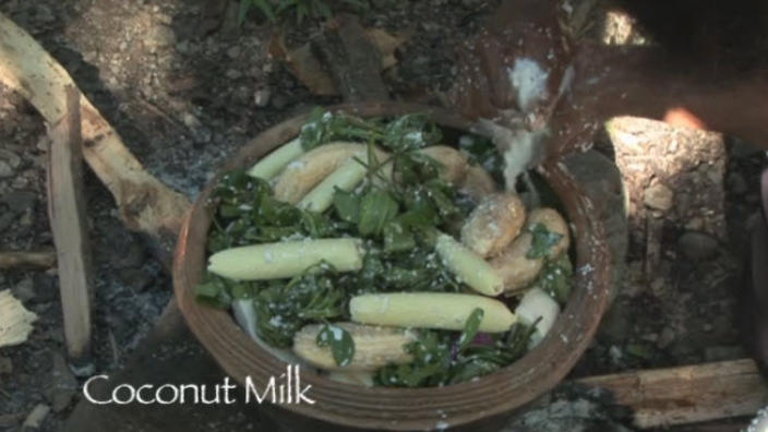 Indigenous Recipe Wild Coconut Cr 232 Me Tulip With Poached
