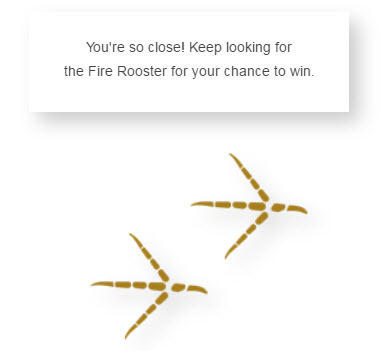 Fire Rooster footprints