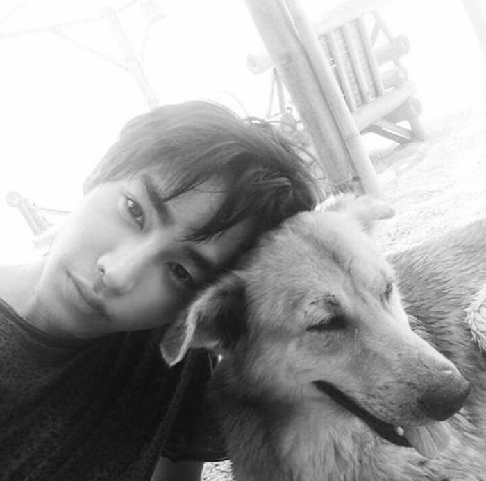 peck_black_and_white_dog
