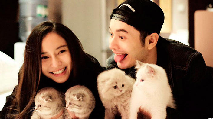 Angelababy and Huang Xiaoming celebrate wedding ... | 704 x 396 jpeg 45kB
