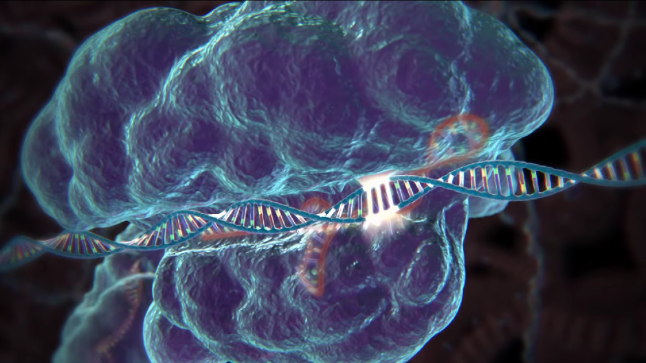 Genetic engineering study guide