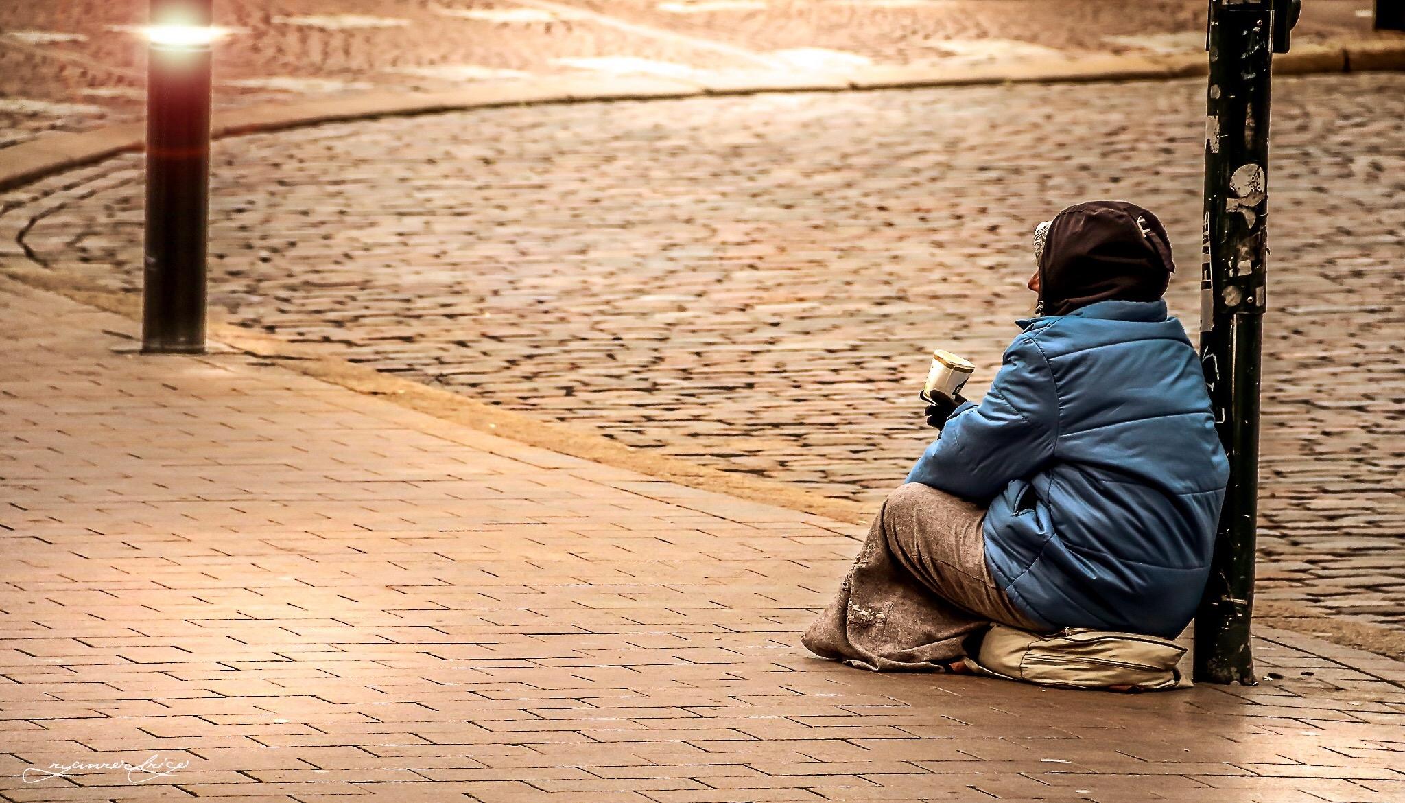 homeless reseach essay