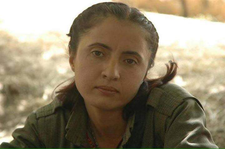Kurdish fighter and geneticist Seran Altunkilic, who spoke English and became Matthew Gardiner's best friend, died in battle in May 2015.