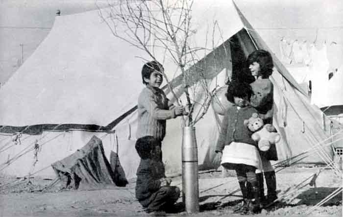 Cypriot children in a refugee camp celebrate Christmas 1974 using dry branches standing upright in empty artillery shells as Christmas trees.