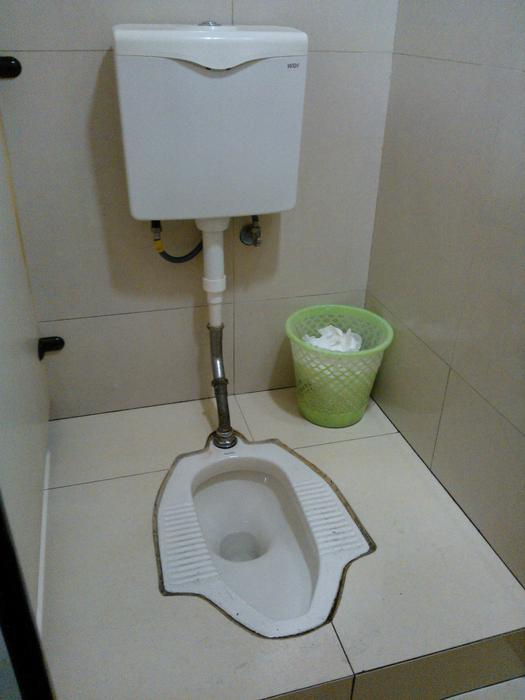 Why Every Ato Employee Should Be Using Squat Toilets Sbs