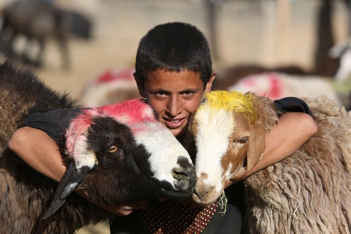 An boy poses as he waits for customers at a livestock market set up for the upcoming Muslim Eid al-Adha holiday, on the outskirts of Kabul, Afghanistan.
