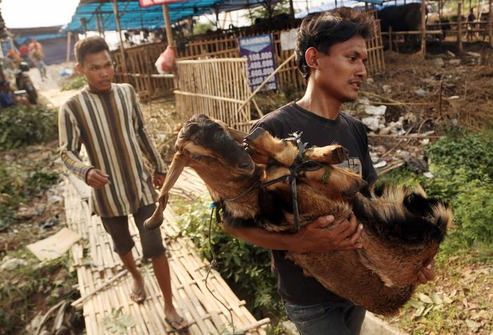 A man carries a goat at a cattle market for Eid al Adha in Jakarta, Indonesia