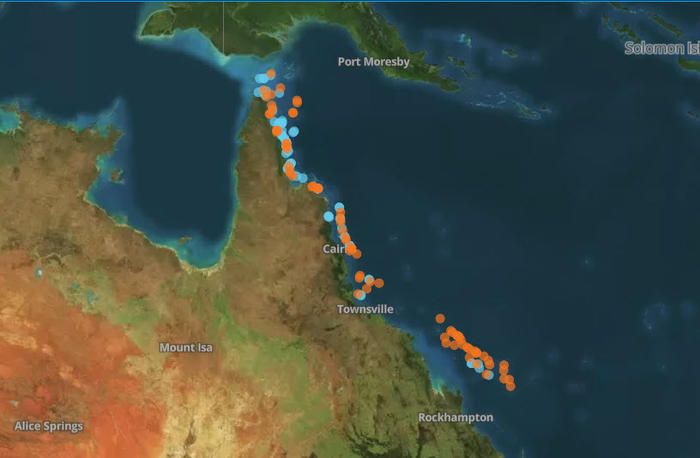Screenshot of the coral bleaching survey map by ARC Centre of Excellence in Coral Reef Studies