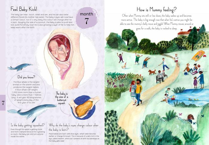 Illustrations by Lizzy Stewart from the book 9 Months by Courtney Adamo and Esther van de Paal