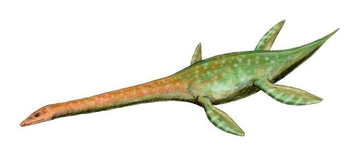 attenboroughsaurus