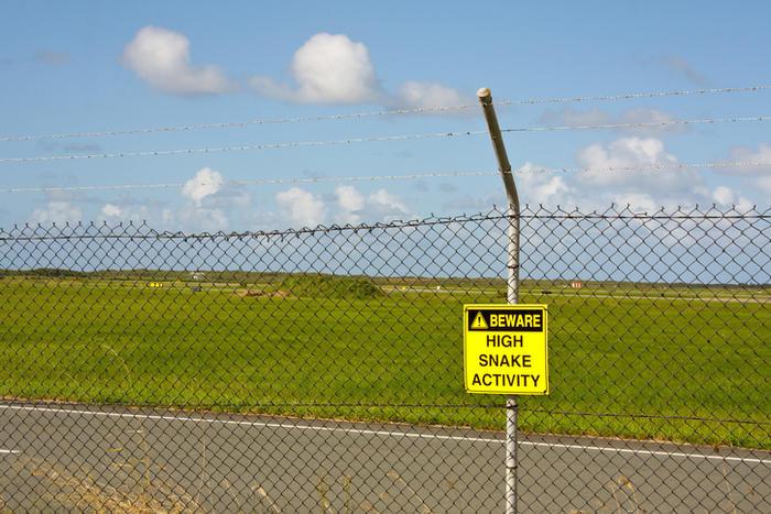 Snake Activity Warning Sign