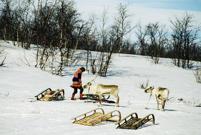 Reindeer herder with sledge near Kautokeino