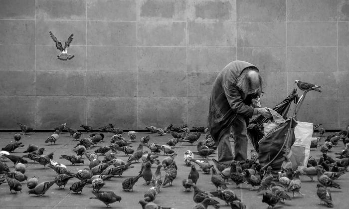 The bird friend... by Gilbert Claes
