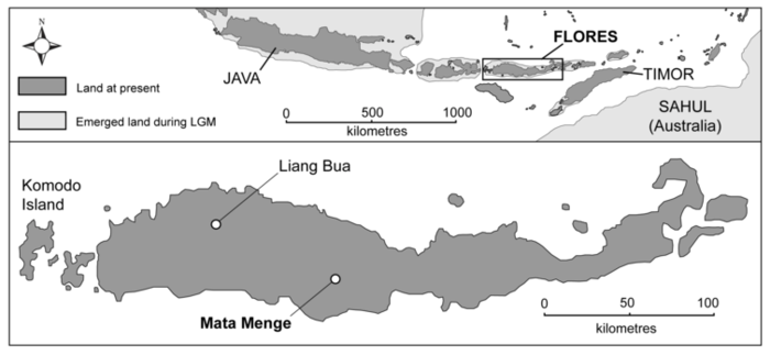 map of flores showing liang bua cave