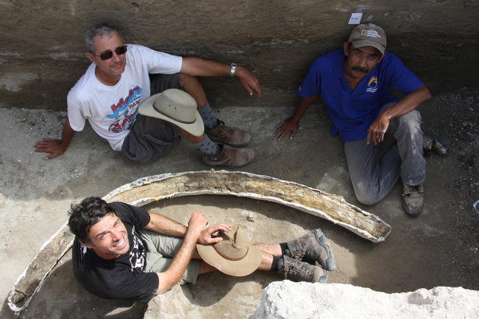 Leaders of the Mata Menge dig sitting around the fossil tusk of a pygmy Stegodon